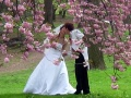 Свадьба: сложности перевода